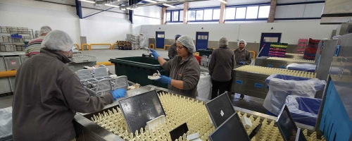 Cung cấp lắp đặt Máy rửa bát băng chuyền Meiko cho hệ thống nhà ăn nhà xưởng